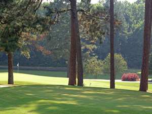 Renowned Golf Course Designed by Donald Ross - A South Carolina Challenging Golf Course